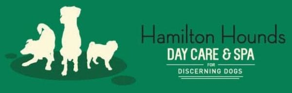 Hamilton Hounds - Dog Daycare